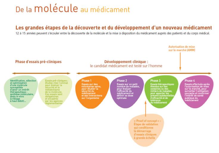 de la molecule au medicament
